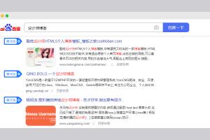 网站代运营 设计师博客SEO优化